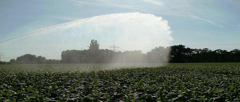profissão em Agronomia mercado de trabalho e mercado no Brasil agronomo