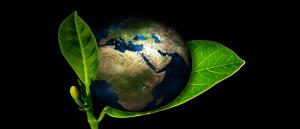 Tendências de Carreira - Ambiente