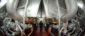Tendências de Carreiras Engenharia Naval