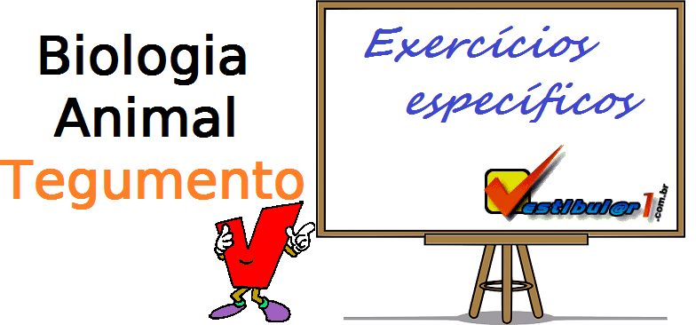 Biologia Animal Tegumento exercícios específicos enem vestibular