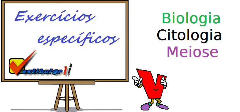 Biologia - Citologia - Meiose exercícios específicos vestibular enem