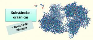 Substâncias orgânicas Revisão de Biologia Vestibular1