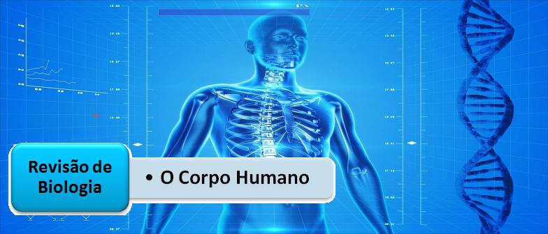 O Corpo Humano Revisão de Biologia Vestibular1