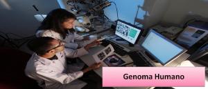 Genoma Humano Revisão de Biologia Vestibular1