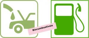 Biocombustíveis 2 Revisão de Atualidades em vestibular1