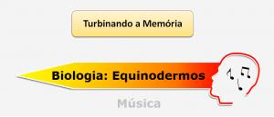 Biologia Equinodermos Música Vestibular1