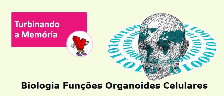 Biologia Funções Organoides Celulares Música Vestibular1