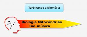 Biologia Mitocôndrias Bio-música Vestibular1