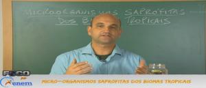 Biologia Vídeo Aula 5 Micro organismos Saprófitas Biomas. Vestibular