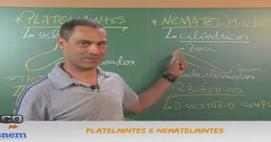 Biologia Vídeo Aula 15 Platelmintes e Nematelmintes. Vestibular1
