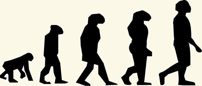 Evolução das Espécies e Seleção Natural Vestibular1