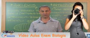 Vídeo Aulas Enem Biologia Vestibular1